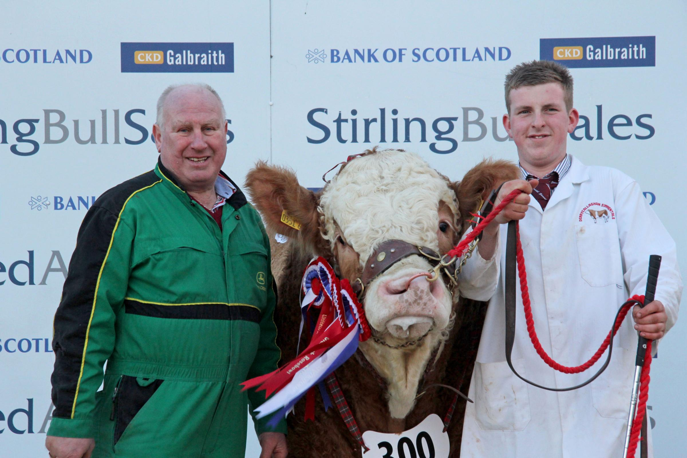 Fermanagh success at Stirling bull sales